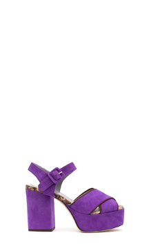 Collection G-di-G  suede viola